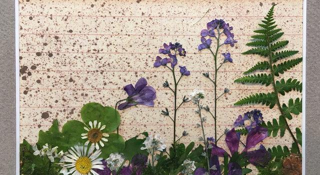 """Impressionen aus dem Workshop """"Blütenbilder"""" im Mai 2018"""